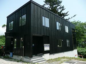 Taiga office