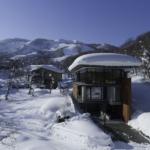Andon Winter 3