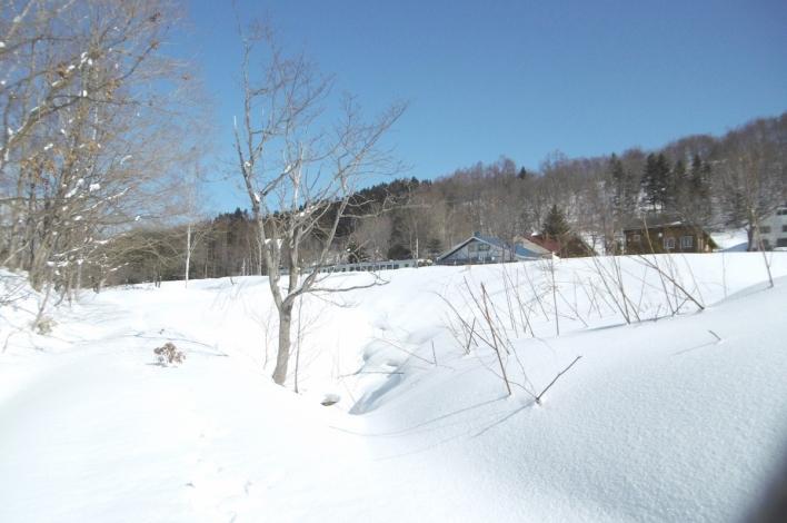 Hirafu Station Winter1