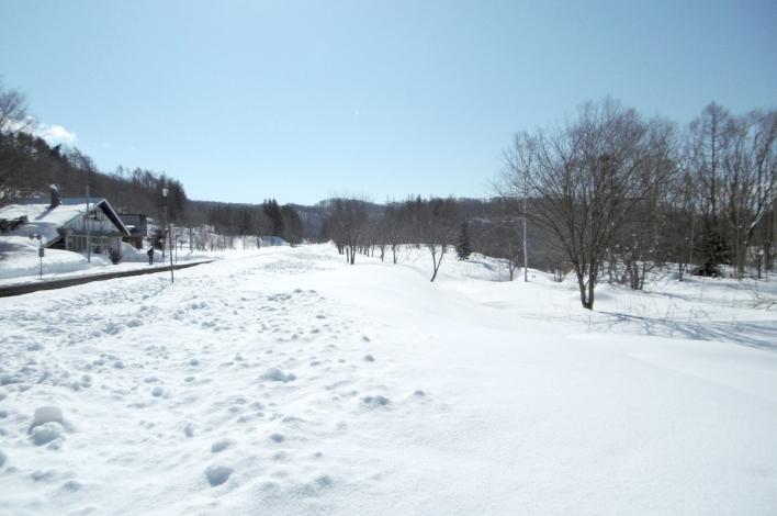 Hirafu Station Winter3