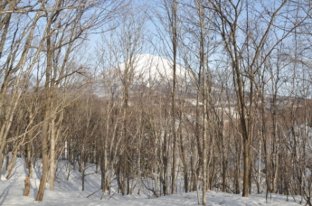 Kabayama-Development-Site-38-2-in-Niseko