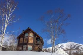 Annupuri Snowfox 1