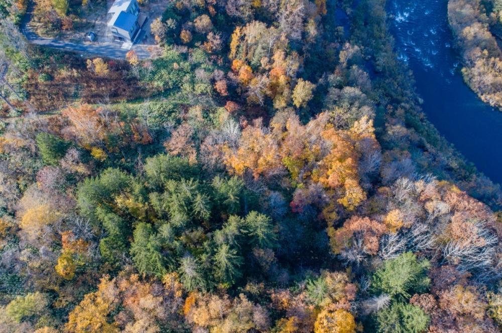 Riverview Estate G Autumn 6