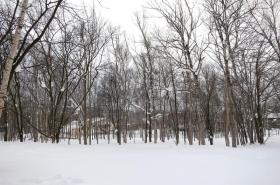 Land Near Rusutsu Ski Resort 1