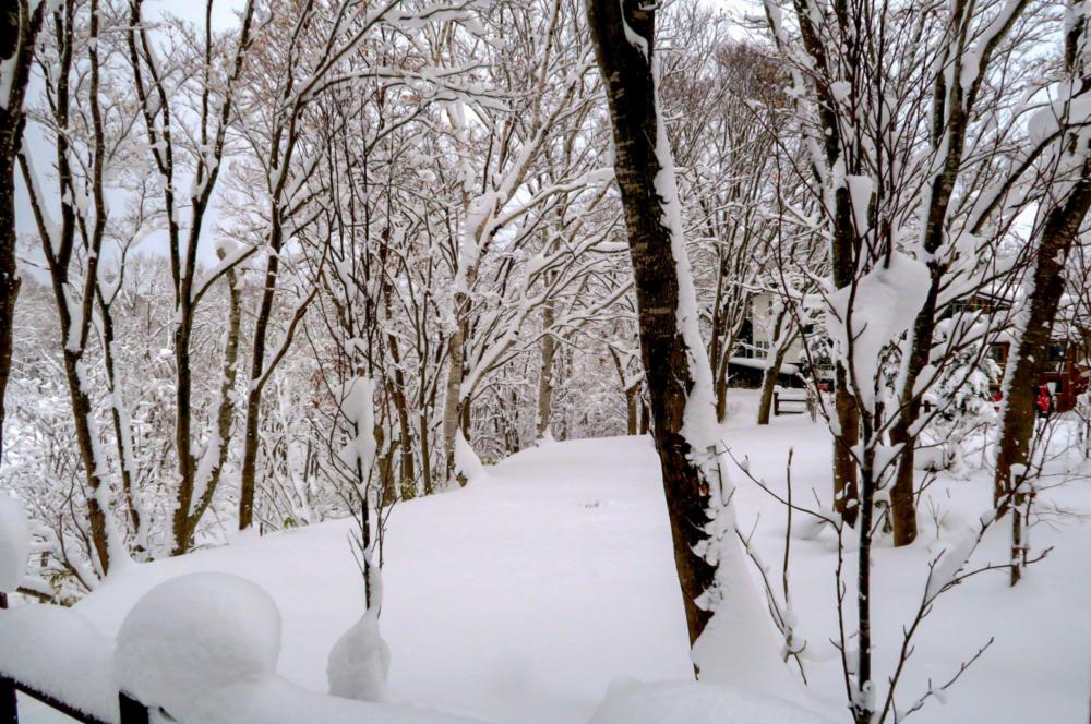 Yamada 165 22Etc Creek Site 11